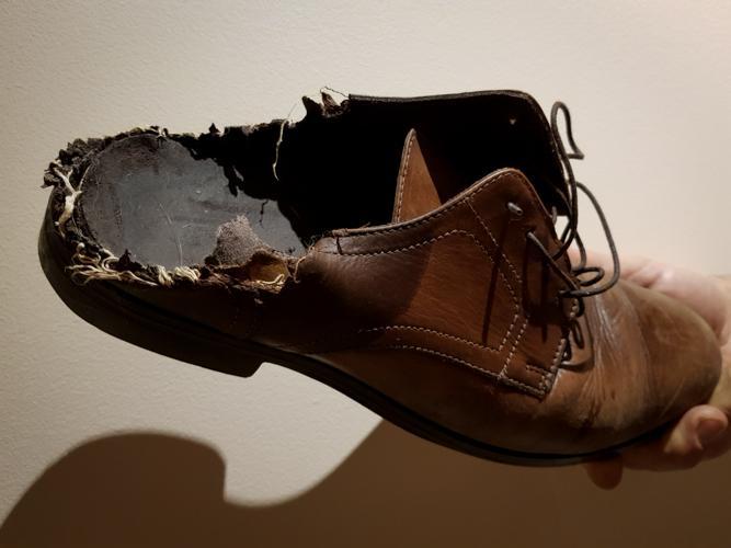 Chaussure mangée par un chien