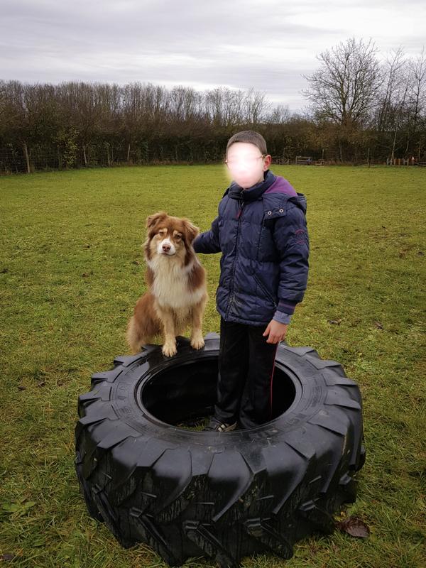 Médiation animale avec un chien